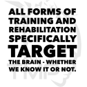 all forms of training and rehab specifically target the brain